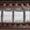Silver-Oakbark Brow