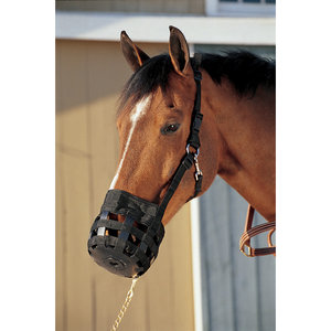 All-In-One Grazing Muzzle