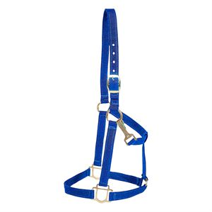 Rider?s International Nylon Halter