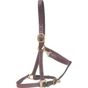 Suffolk Stable and Turnout Halter