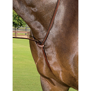 Pessoa Legacy Fancy Raised Standing Martingale