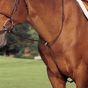 Wellington Standing Martingale
