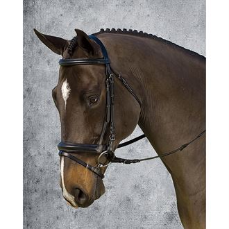 Crown Jawband Flash Bridle