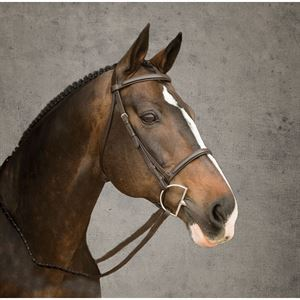 Suffolk Plain Snaffle Bridle