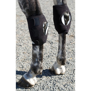 Ice Horse® Hock Wrap