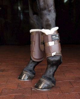 Dressage Sport Horse Boots 2