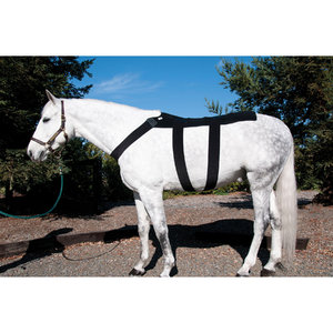 ICE HORSE DEEPHEAT BACK WRAP
