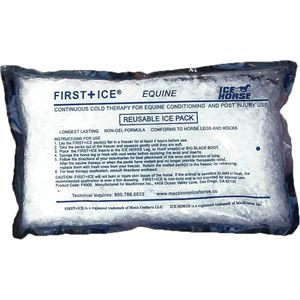 CASE OF 12 ICE PACKS 2015