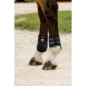 ZANDONA CARBON AIR FETLOCK BT