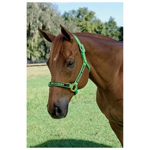 TRIPLE E CUSTOM HALTER-NO OPTN