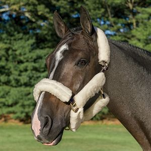 WOOLBACK HALTER TUBE SET