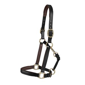 Sussex Lined Leather Halter in Colors