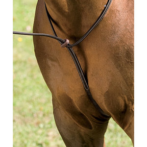 Crown Raised Standing Martingale