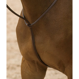 DYON STANDING MARTINGALE