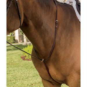 CIRCUIT RAISED MARTINGALE