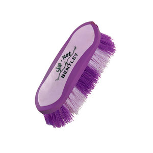 EquestriaÖ Sport Small Dandy Brush