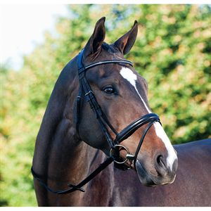 PASSIER FORTUNA BRIDLE