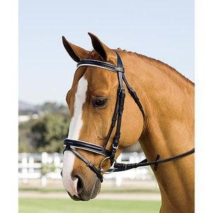 Crown Dressage Bridle