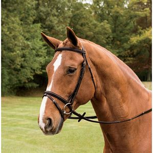 CROWN RAISED FLASH BRIDLE