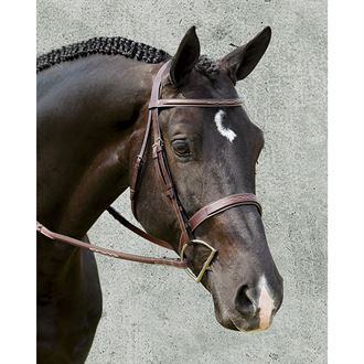 DYON WIDE NOSE HUNTER BRIDLE