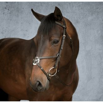 Crown Premier Figure-8 Bridle