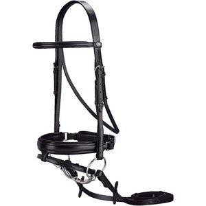 Passier Aries Dressage Bridle