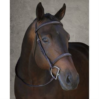 Vespucci Fancy Raised Hunter Bridle