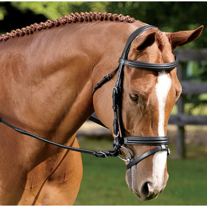 Vespucci Double Raised Dressage Bridle