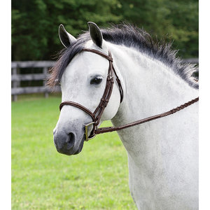 RODRIGO FANCY PAD BRIDLE-PONY