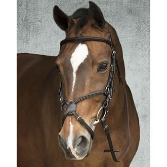 Vespucci Fancy Raised Figure 8 Bridle