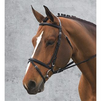 COMFORT CROWN DRESSAGE BRIDLE