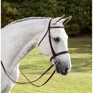 USHJA Hunter Derby Bridle