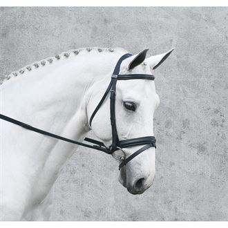 Stübben Classical Dressage Bridle