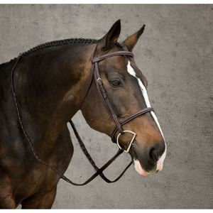 Crown Plain Raised Bridle