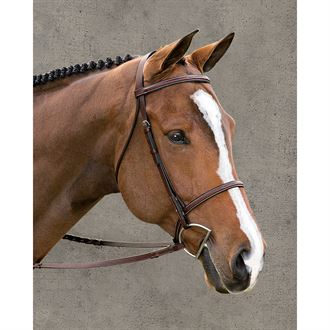 Suffolk Premier Fancy Stitched Bridle