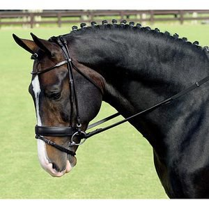 Vespucci Rolled Dressage Bridle