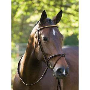DELUXE FLASH BRIDLE W/CLINCHER