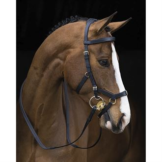 The Rambo« Micklem Original Multibridle