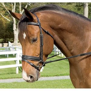 Anky« Dressage Bridle with Flash