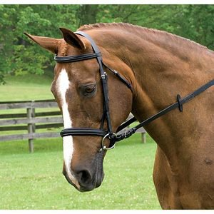 Anky« Dressage Bridle without Flash