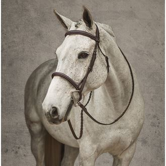 HDR Stress Free Fancy Stitch Bridle