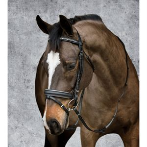 Crown Crystal Dressage Bridle