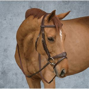 Dy'on Anatomic Bridle