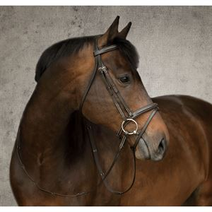 CROWN PREMIER FLASH BRIDLE
