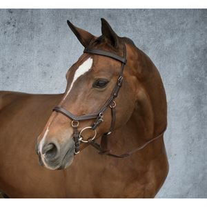 MICKELM COMPETITION BRIDLE DMO