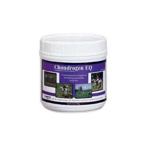 Chondrogen EQ Joint Supplement