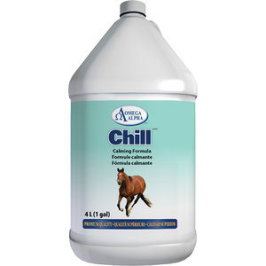 CHILL GALLON