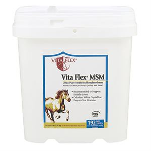 Vita-Flex® MSM Joint Supplement