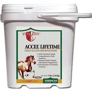 Vita Flex Accel Lifetime Supplement
