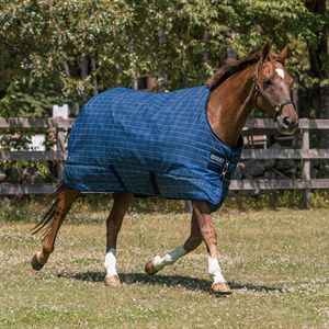 Rhino Original Heavy Turnout Blanket
